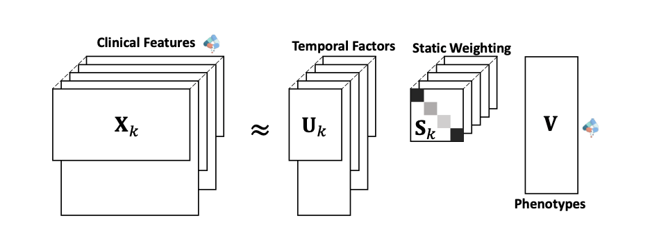 PARAFAC2 model for computational phenotyping: The input is a collection of binary matrices, with each of them corresponding to a patient. They have the same num- ber of columns representing diseases, but different numbers of rows representing clinical visits. Value 1s in those matri- ces indicate confirmation of disease while value 0 means ei- ther the absence of the disease or missing diagnosis.