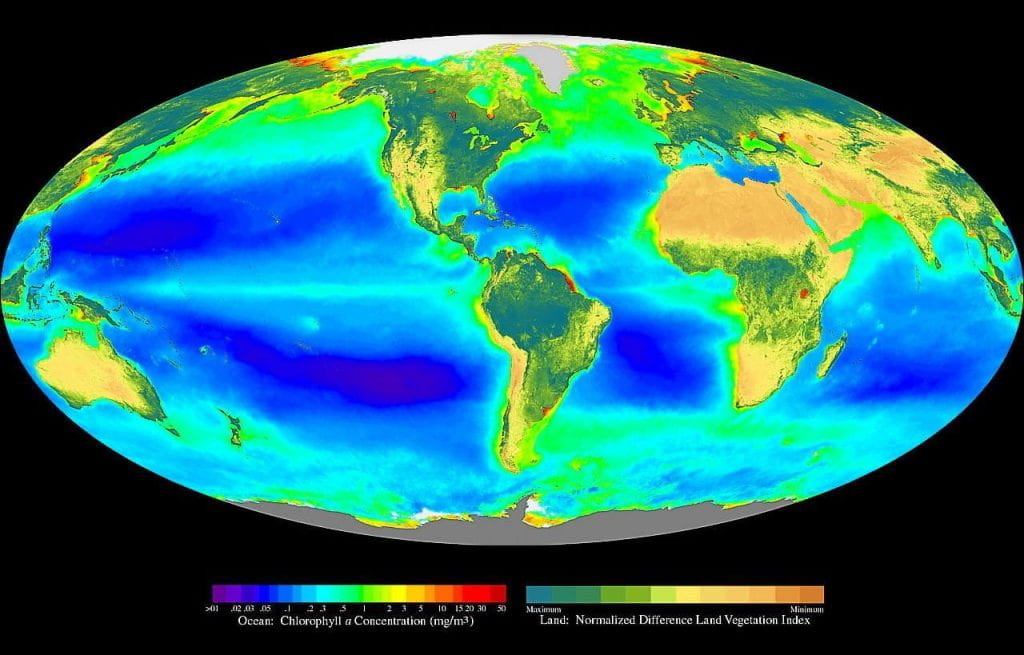 """Global oceanic and terrestrial photoautotroph abundance, from September 1997 to August 2000, provides an estimate of autotroph biomass and serves as a rough indicator of primary production potential. (Source: """"Seawifs global biosphere"""" by Provided by the SeaWiFS Project, Goddard Space Flight Center and ORBIMAGE - http://oceancolor.gsfc.nasa.gov/SeaWiFS/BACKGROUND/Gallery/index.html and from en:Image:Seawifs global biosphere.jpg. Licensed under Public Domain via Commons)"""
