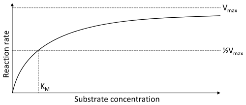 Enzyme kinetics plot by Thomas Shafee, CC-BY-SA 4.0 from Wikimedia Commons