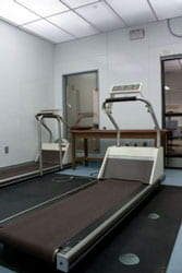 Overview of Facility and Equipment